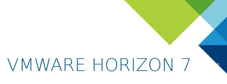 Horizon 7